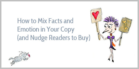 How to Mix Facts and Emotion in Your Sales Copy